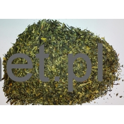 Japan Sencha Makinohara